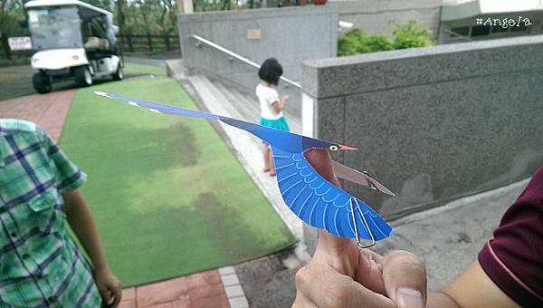 平衡鳥.jpg