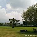 姜姐家望出去的草地.jpg