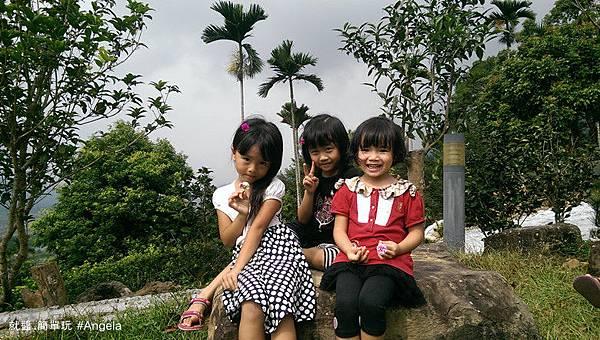 三朵花.jpg