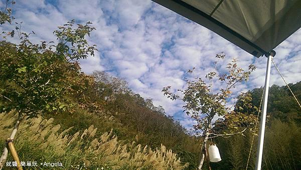 29日美麗的早晨.jpg