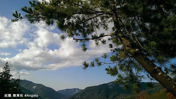 五葉松前的風景.jpg