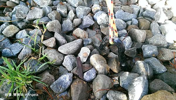 碎石子地.jpg