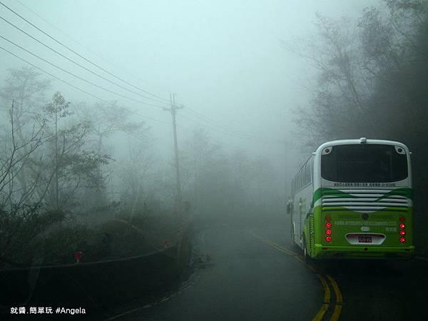 霧氣重.jpg