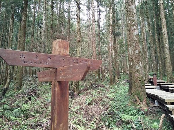 明池森林遊樂園-出口.jpg