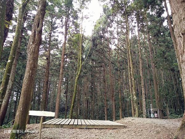 森林區2.jpg