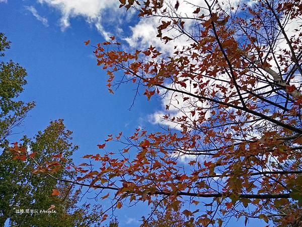 美樹-25.jpg