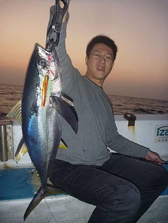 大鮪魚也受不了鯡鐵板的誘惑.JPG