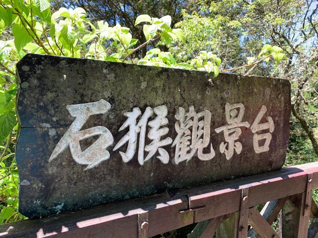阿里山_200507_0725.jpg