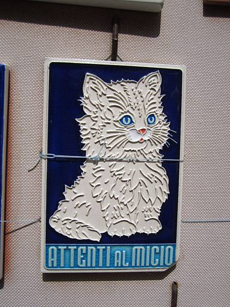 可愛的小白貓磁磚