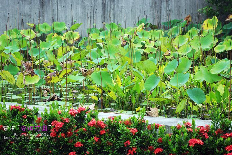 豐田安琪花園