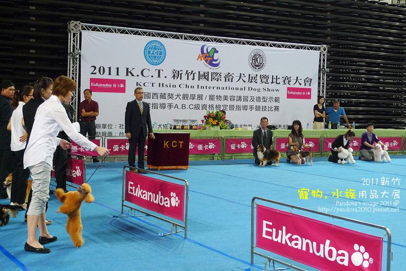 K.C.T 新竹國際畜犬展覽比賽大會