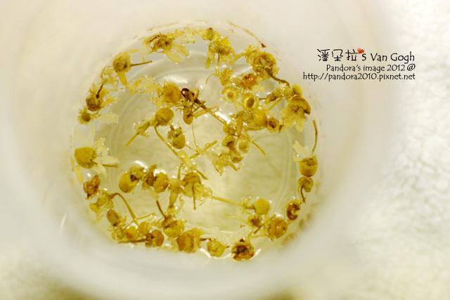2012.02.26-洋甘菊茶