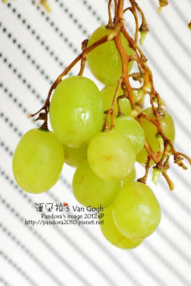 2012.03.01-青葡萄