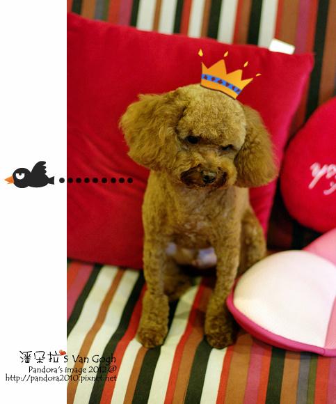 小柚子3歲生日