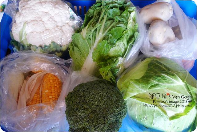 2013.03.08-蔬菜正盛產