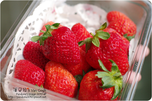 自家莊園。溫室草莓