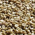 2012.12.06-咖啡豆-0