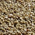 2012.12.06-咖啡豆-1