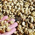 2012.12.06-咖啡豆-2