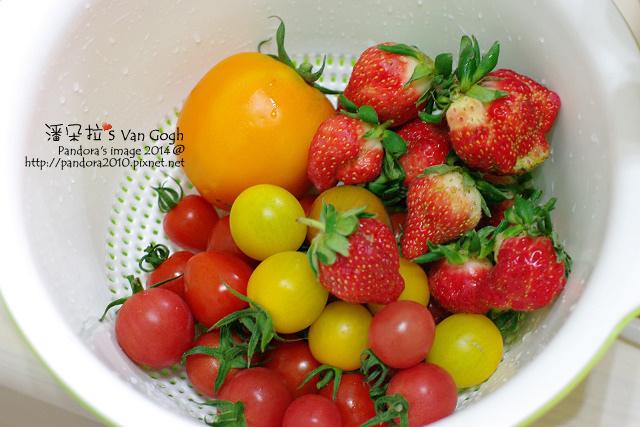 2014.02.28-自家莊園。蕃茄、草莓.jpg