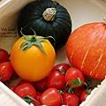 2014.02.28-自家莊園。南瓜、蕃茄.jpg