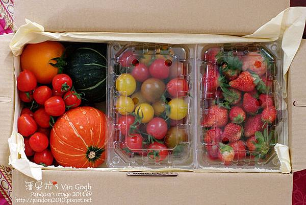 2014.02.28-自家莊園。南瓜、蕃茄、草莓.jpg