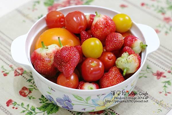 2014.02.28-自家莊園。蕃茄、草莓-2.jpg