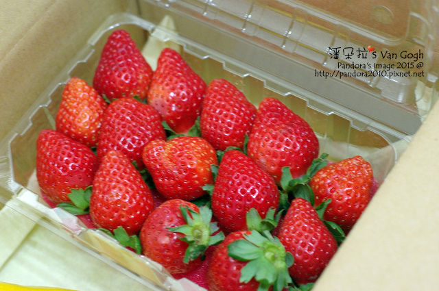 2015.01.16-自家莊園2.0。草莓.jpg