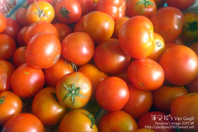 2015.09.08-番茄.jpg