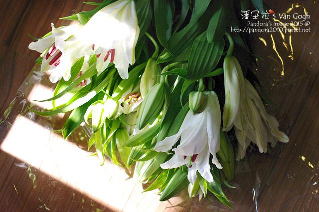 2015.11.06-白百合水晶-3.jpg