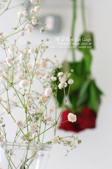 NO.028#006、007-紅玫瑰3號、滿天星-8.jpg