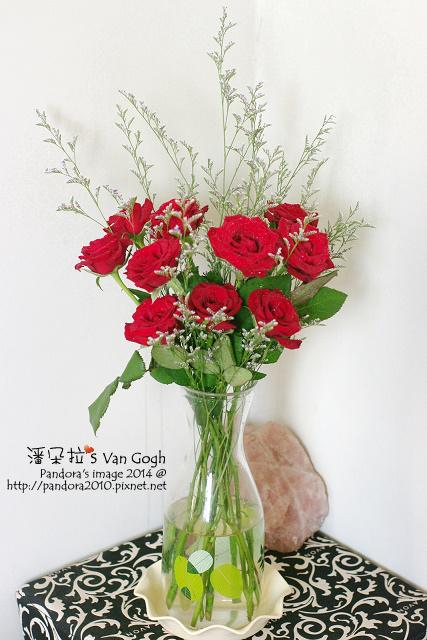 NO.028#009、010-卡斯比亞、紅玫瑰5號-3.jpg