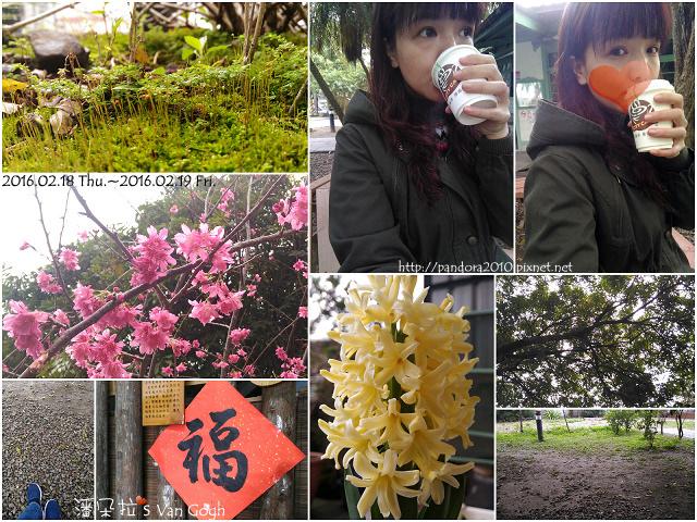 2016.02.19-Pandora's Life.jpg