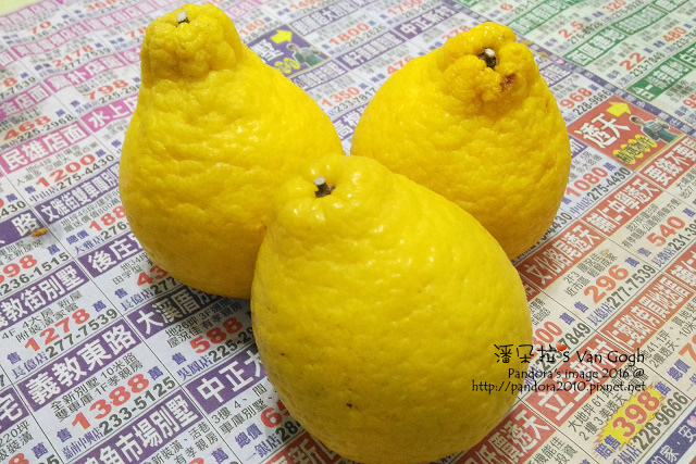 2016.02.27-檸檬柑.jpg