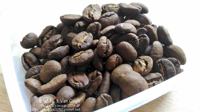 2016.10.11-(樺鄉)台灣咖啡豆-冷凍.jpg