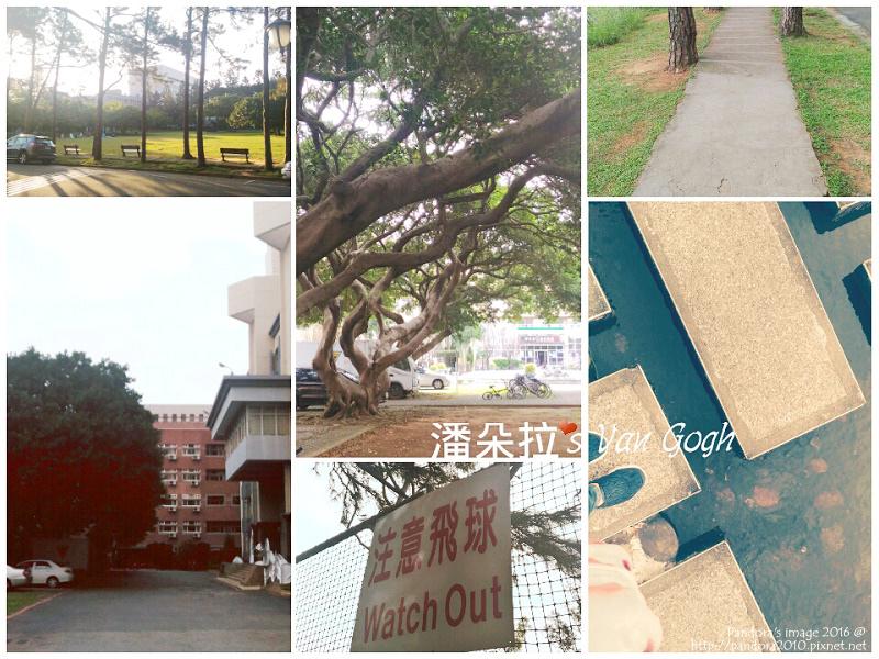 2016.12.09-(中央大學)晨間散步-2.jpg