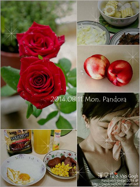 Pandora's 健健美(2)-2014.08.11.jpg