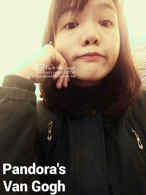 2017.12.07-Pandora's Van Gogh.jpg