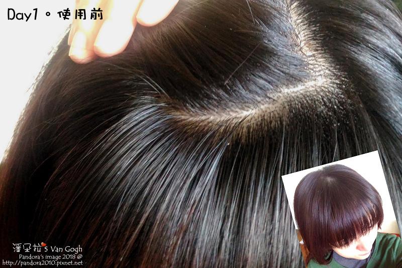 2018.03.28-(Syoss絲蘊)植萃頭皮養護護理膜。Day0使用前.jpg