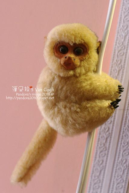 2018.10.05-小猴.jpg