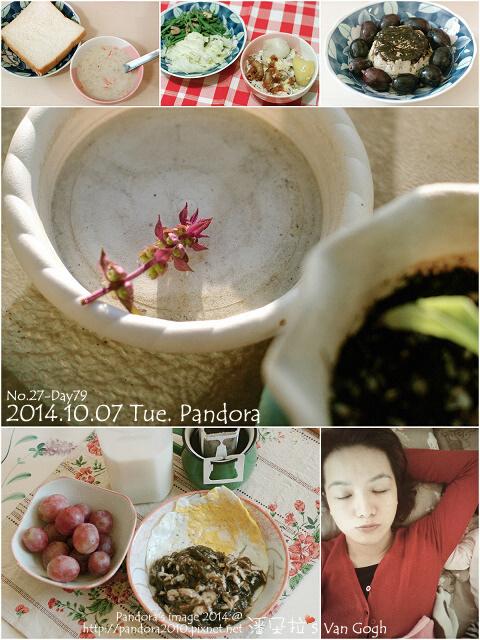 2014.10.07 Tue. Pandora.jpg