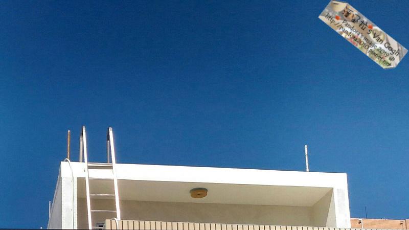 2019.06.21-鄰居家的屋頂.jpg