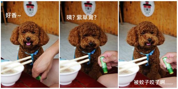 黑皮臭豆腐.bmp.jpg