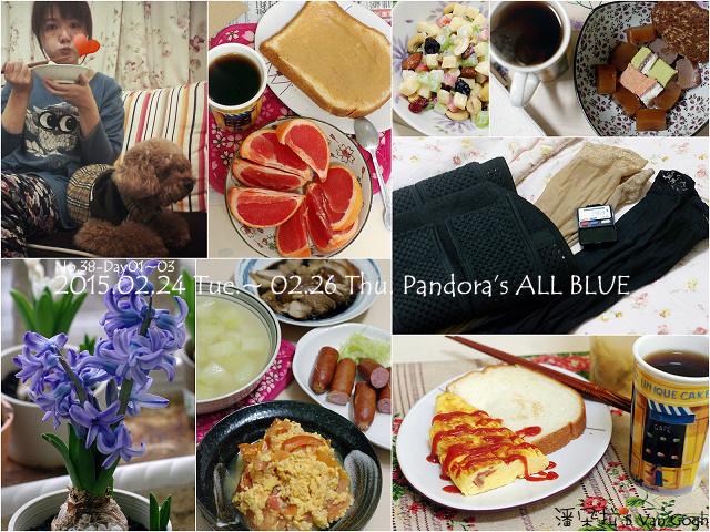2015.02.24~02.26 Thu. Pandora