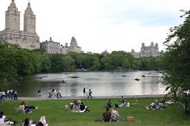 中央公園湖畔