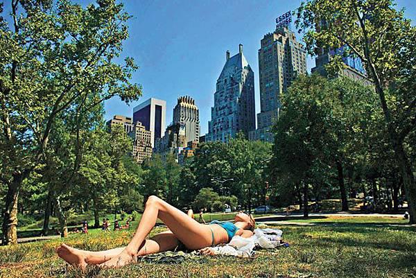 中央公園草坪日光浴