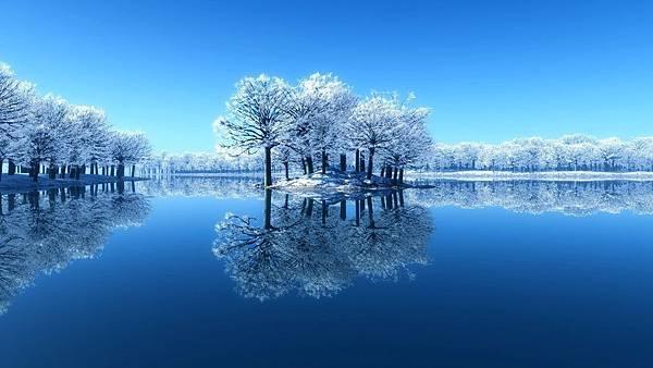 冬湖映樹.jpg