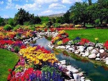 花園002_20131013_jozica matijas