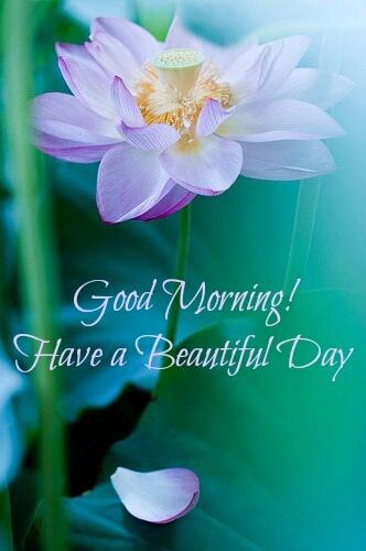 good morning025