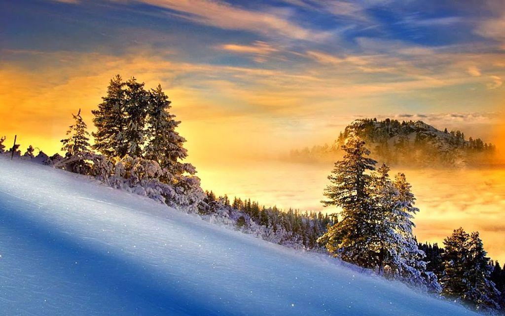 雪景006_20131205_dimka angelova